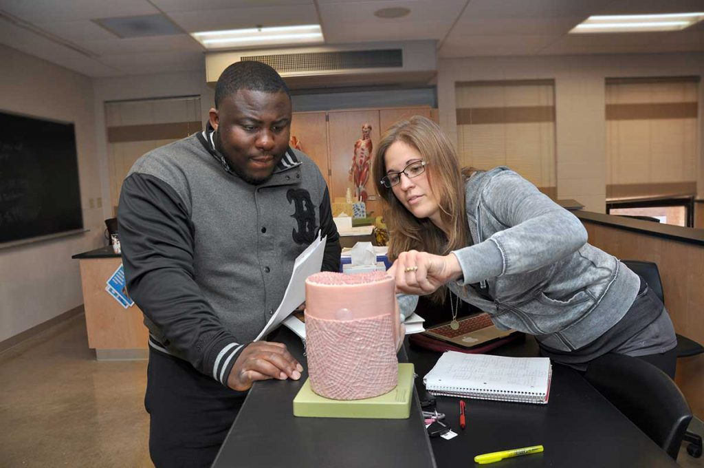 Southwestern Illinois College Biology Program