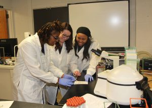 Southwestern Illinois College medical lab technician students work on a practical lab exercise.